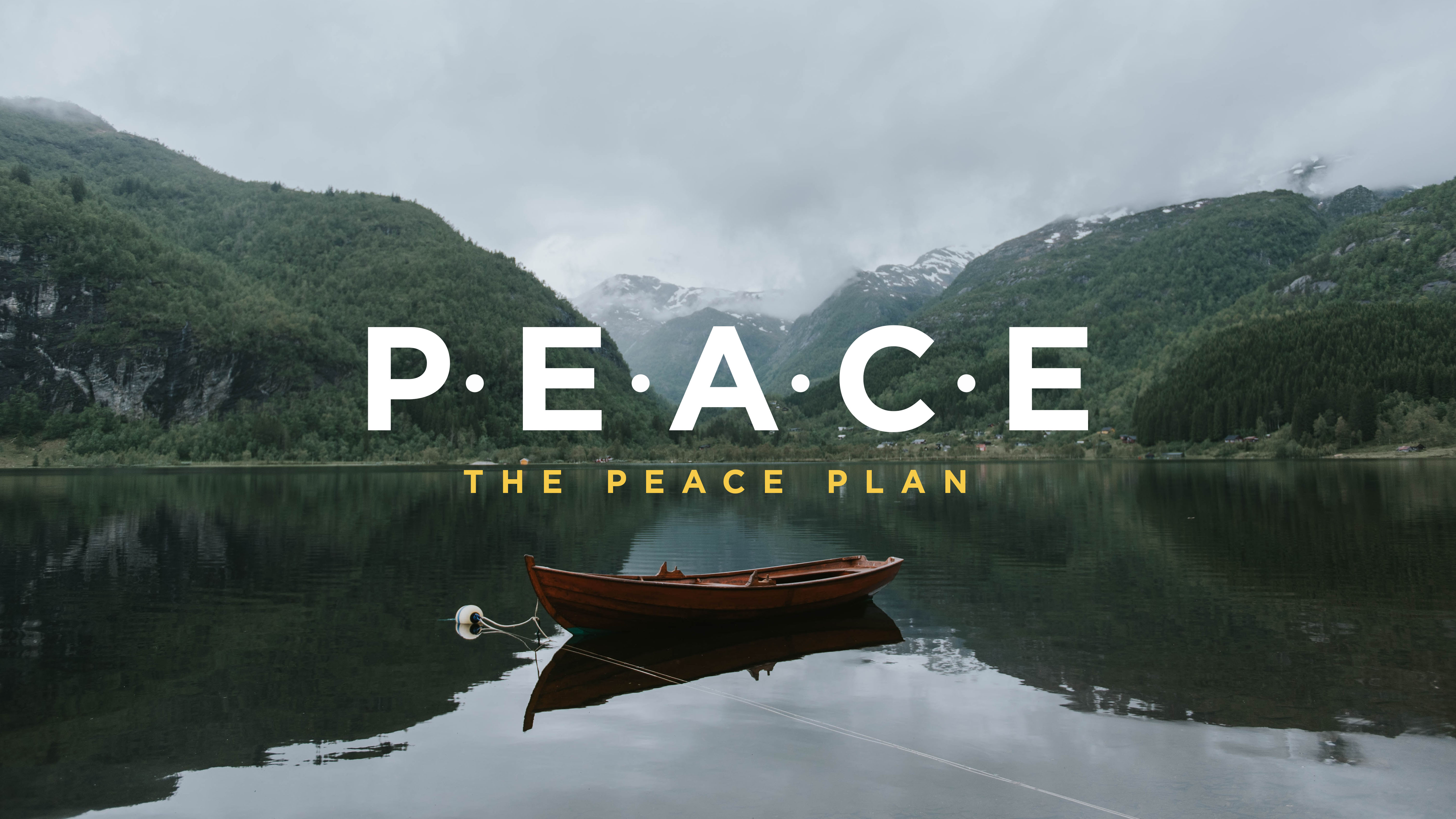 P.E.A.C.E. Plan